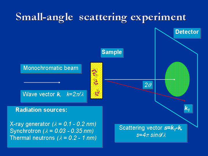 small angle xray scattering thesis Small angle x-ray scattering studies on myosin a r faruqi, r a cross and j kendrick-jones mrc laboratory of molecular biology, hills road, cambridge cb2 2qh, uk.